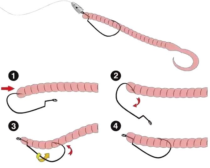 Как насадить червя на офсетный крючок