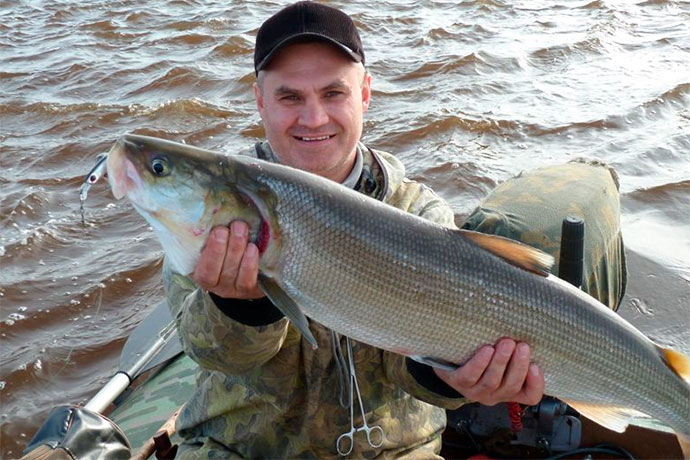 Рыба Муксун - возраст и размеры