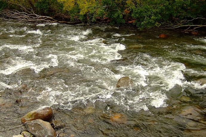 Место для ловли голавля: речной перекат